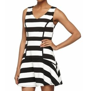 Fable Stripe Fit and Flare Dress